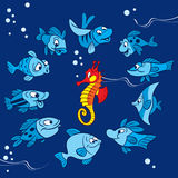 Funny fish on a blue background Stock Photo