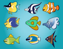 Funny fish cartoon Royalty Free Stock Photos