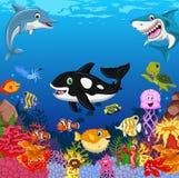Funny fish cartoon sea life for you design. Illustration of funny fish cartoon sea life for you design Stock Photo
