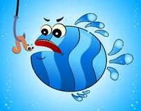 funny fish eats a little worm Royalty Free Stock Image