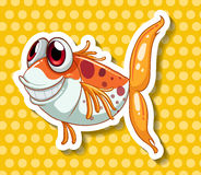 Funny fish Royalty Free Stock Photo
