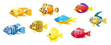 Set cartoon Funny fish vector characters. Colorful coral reef tropical fish set vector illustration. Sea fish collection. Funny fish vector characters. Colorful Stock Photos