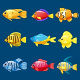 Set cartoon Funny fish vector characters. Colorful coral reef tropical fish set vector illustration. Sea fish collection. Funny fish vector characters. Colorful Stock Images