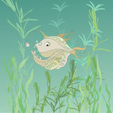 Funny fish Royalty Free Stock Photography