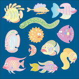 Funny Fishes Royalty Free Stock Photos