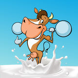 Funny fitness strong cow cartoon standing in milk splash - vector Stock Image