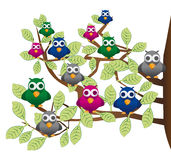 Funny flock of colorful birds stock illustration