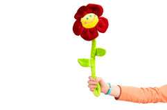 Free Funny Flower Royalty Free Stock Photos - 23852838