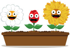 Funny flowers. Long pot with funny flowers Stock Illustration