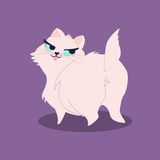 Funny fluff pink cat isolated on violet background. Vector illustration. Funny fluff pink cat isolated on violet background. Vector illustration Stock Photos