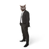 Funny fluffy cat in a business suit businessman. c. Ollage on a white Stock Photos
