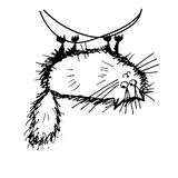 Funny fluffy cat, sketch for your design Stock Photography