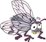 Funny fly. Illustration on funny cartoon fly Stock Image
