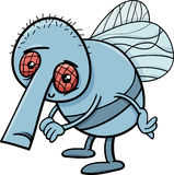 Funny fly cartoon illustration Royalty Free Stock Photos