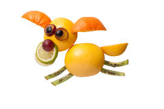 Funny flying dog made of fruits Stock Image