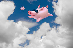 Funny flying piggies. Sky divers Royalty Free Stock Images