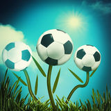 Funny football and soccer backgrounds Stock Photography