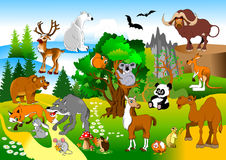 Funny forest Stock Images