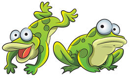 Funny Frog royalty free illustration