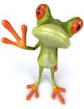 Funny frog Stock Photo