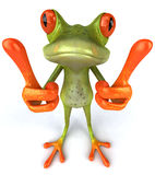 Funny frog Royalty Free Stock Photo