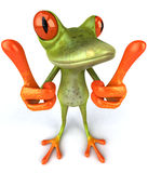 Funny frog Royalty Free Stock Image