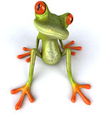 Funny frog Stock Image