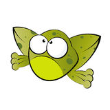Funny frog. Illustration of a funny frog with big eyes Stock Photography