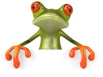 Funny frog with a blank sign Royalty Free Stock Photos