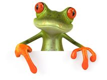 Funny frog with a blank sign Royalty Free Stock Images