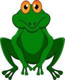 Funny frog cartoon Royalty Free Stock Photos