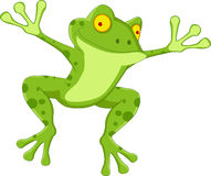 Funny frog cartoon Stock Photos