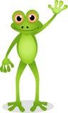 Funny frog cartoon Stock Photography