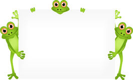 Funny frog cartoon with blank sign Stock Image