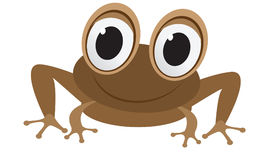Funny frog cartoon Royalty Free Stock Photo