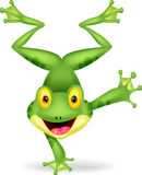 Funny frog cartoon standing on its hand. Illustration of Funny frog cartoon standing on its hand stock illustration