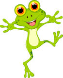 Funny frog cartoon for you design Stock Images