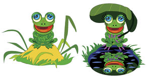 Funny frog on hill and pond Stock Image