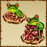 Funny frog picture on a pile of precious stones Royalty Free Stock Image