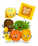 Funny fruit  cartoon characters Stock Images