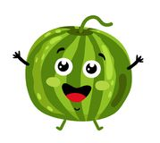 Funny fruit watermelon isolated cartoon character. Cute fruit watermelon cartoon character isolated on white background illustration. Funny positive and friendly Stock Images