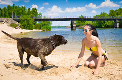 Funny game of a young woman and dog Stock Photography