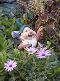 Funny garden gnome in the colors Royalty Free Stock Image
