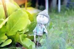 Funny garden gnome standing among nice flowers royalty free stock photography