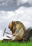 Funny gardener concept, chipmunk with rake and hat Royalty Free Stock Images