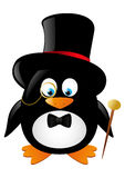 Funny gentleman penguin Royalty Free Stock Image