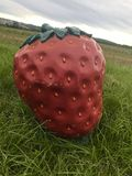 Funny giant strawberry sculpture in the fields Royalty Free Stock Image