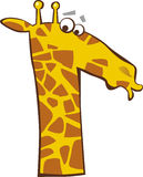 Funny giraffe. Illustration of funny surprised giraffe Royalty Free Stock Images