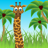 Funny giraffe on background of palm trees Stock Photo