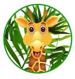 Funny giraffe cartoon Stock Photos